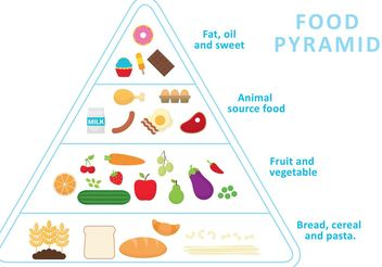Food Pyramid Vector - Free vector #145055
