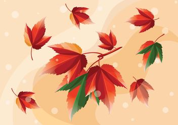 Leaves Vectors - vector #145555 gratis