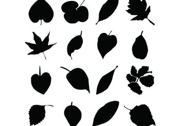 Leaf Silhouettes Free Vector Graphics - бесплатный vector #145685
