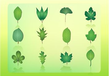 Free Leaf Vector Icons - бесплатный vector #145835