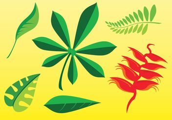 Free Plant Images - Free vector #145955