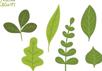 Free Green Leaves Vector Pack - Kostenloses vector #145975