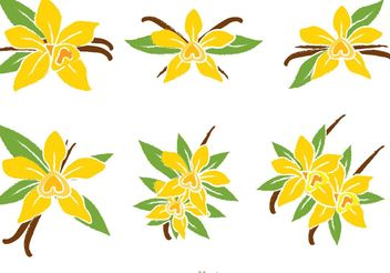 Vanilla Flower Vectors - бесплатный vector #146155