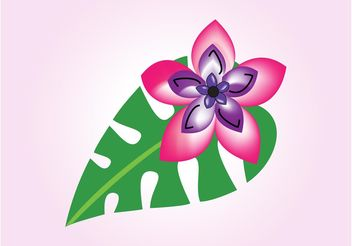 Exotic Flower Graphics - Free vector #146465
