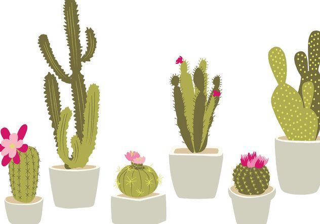 Hand Drawn Potted Cactus - vector #146665 gratis