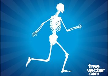 Running Skeleton Graphics - vector gratuit #148355