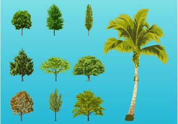 Trees Illustrations - vector gratuit #152825