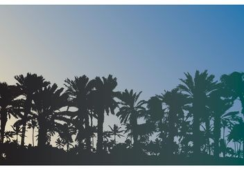 Free Palm Trees Vector - Free vector #153255