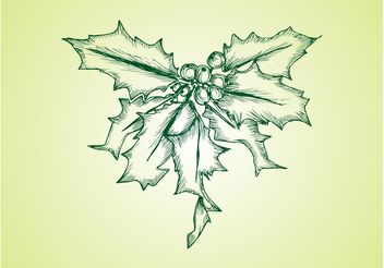 Vector Mistletoe - Free vector #157135
