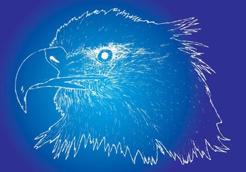 Eagle Sketch - vector gratuit #160425