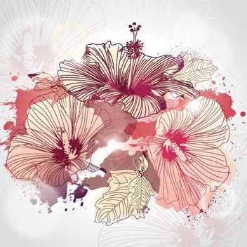 Hand Drawn Illustrated Hibiscus Flowers - vector gratuit #162845
