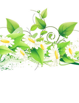 Abstract White Daisies with Swirling Flower Branches - vector gratuit #164695