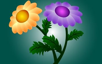 Chrysanthemum Flowers - vector gratuit #172025