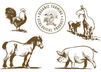 Hand Drawn Farm Animals - vector gratuit #172935
