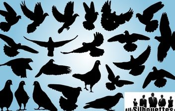 Pigeon Pack Symbol of Peace - vector gratuit #173965