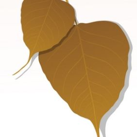 Close-up of Peepal Leaf - Free vector #175495