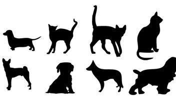 House animals Vector graphics - Kostenloses vector #177455