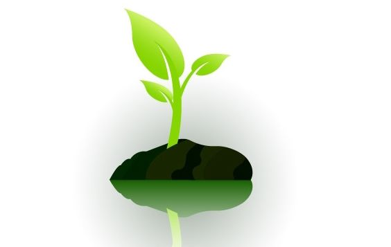 small plant growing - Kostenloses vector #177645