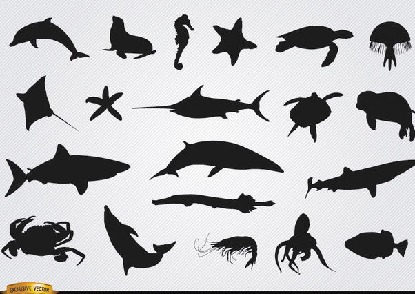 Sea animals silhouettes set - Free vector #181275