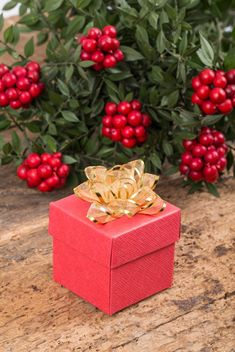 New year gift in red box - бесплатный image #182925