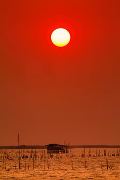 Red sunset - image gratuit #183515