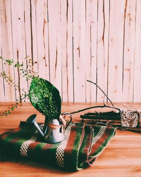Green leaves in watering can on checkered plaid - бесплатный image #184135