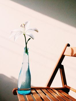 Flower in vase on chair - image #184185 gratis