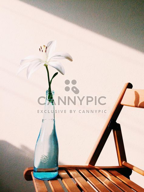 Flower in vase on chair - бесплатный image #184185