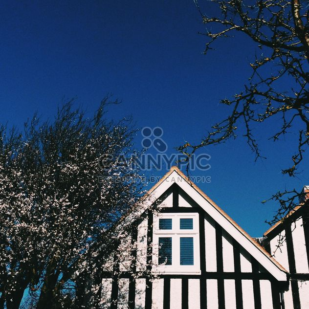 Spring, Strips, house, trees - бесплатный image #184195