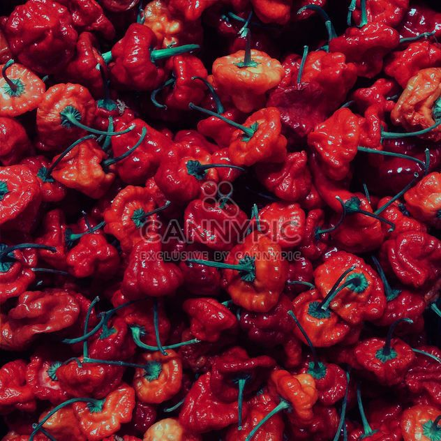 Red pepper - Free image #184265