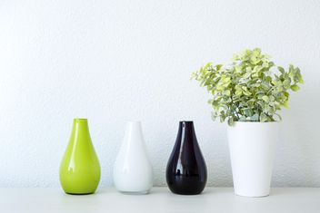 Plant in pot and vases - Free image #186295