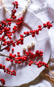 Twigs with red berries on plate - Free image #187425
