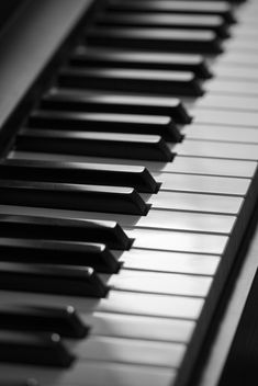 Piano keys in detail - Free image #187915