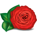 Rose - icon gratuit #194355