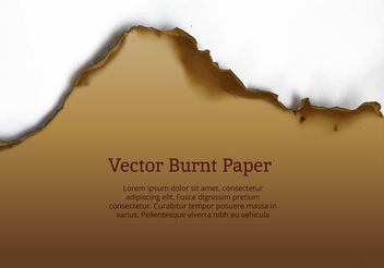 Burnt Paper Edge Vector - vector gratuit #199915