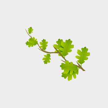 Green Branch Vector - vector gratuit #201775