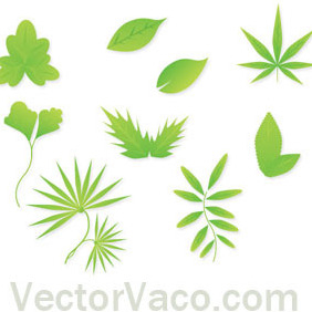 Spring Free Vector Leaves - vector gratuit #201995