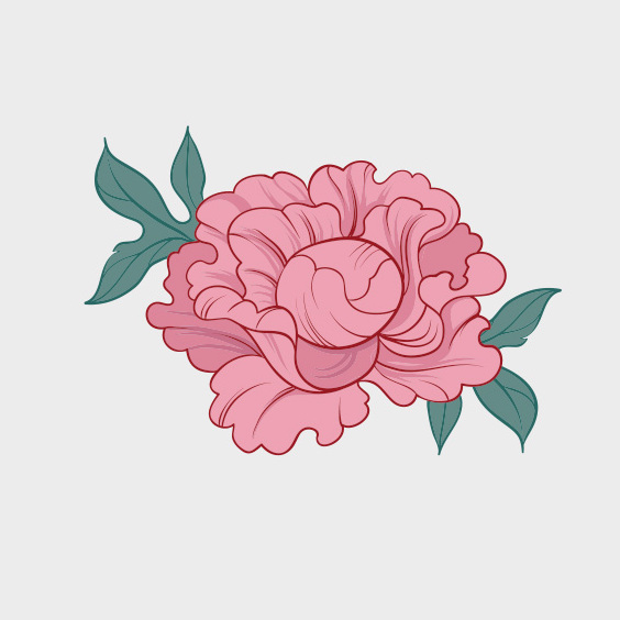 Hand Drawn Vector Peony - Free vector #202025