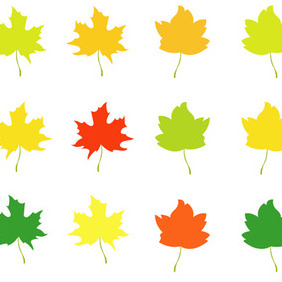 Autumn Leaves - Free vector #204995
