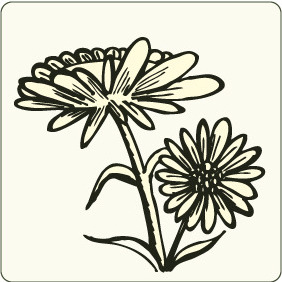 Floral 82 - Free vector #206535