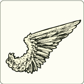 Wing 7 - Free vector #207485