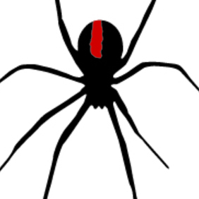 Spider - Black Widow Red Back - Free vector #209105