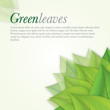 Green Leaves - Kostenloses vector #212785