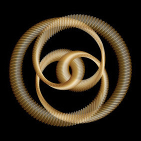 Golden Knot - Vector Art - Free vector #213265