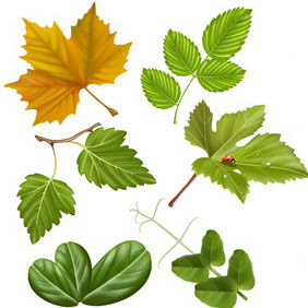 High Quality Vector Leaves - vector #214165 gratis