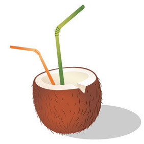 Coconut With Straws Free Vector - vector gratuit #214255
