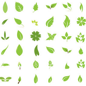 Green Leaf Design Elements - Free vector #214335