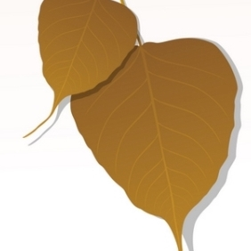 Close-up Of Peepal Leaf - Free vector #215545
