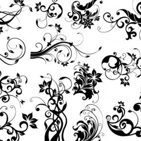 EPS & AI Floral Design Elements - vector gratuit #215865