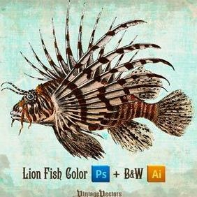 Lionfish Vector And Colored Image - vector gratuit #218265